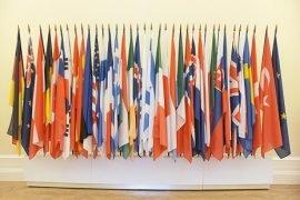 OECD flags