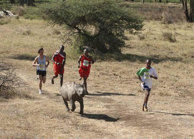 2020 LEWA Safari Marathon cancelled in wake of COVID-19 pandemic